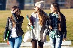 Tres muchachas de los estudiantes que caminan en el campus de la universidad Imagenes de archivo