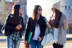 Tres muchachas de los estudiantes que caminan en el campus de la universidad Imagen de archivo libre de regalías