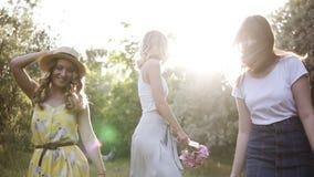 Tres muchachas hermosas en una soltera van de fiesta en naturaleza Caminando en el verde, risa del bosque del verano, saltando li almacen de metraje de vídeo