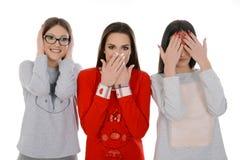 Tres muchachas les gusta tres monos foto de archivo