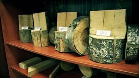 Tres muestras de madera de la montaña almacen de metraje de vídeo