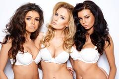 Tres mujeres jovenes curvaceous atractivas hermosas Foto de archivo libre de regalías