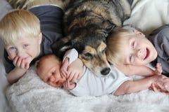 Tres niños jovenes felices que se acurrucan con el perro casero en cama Fotos de archivo