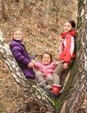 Tres niños - muchachas que se inclinan en árbol Fotografía de archivo