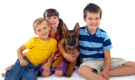 Tres niños y perros Foto de archivo