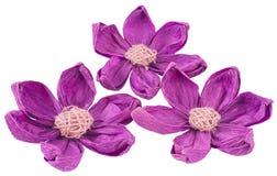 Tres orquídeas de papel violetas Foto de archivo libre de regalías