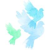 Tres palomas de la acuarela Fotografía de archivo