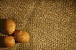 Tres patatas sin procesar Foto de archivo