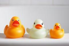 Tres patos de goma Fotografía de archivo libre de regalías
