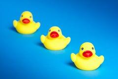 Tres patos del baño Imágenes de archivo libres de regalías