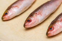 Tres pequeños pescados en plato en el fondo blanco Fotografía de archivo