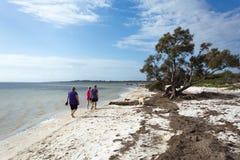 Tres personas que caminan a lo largo de un estuario abrigado con los perros imagenes de archivo
