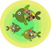 Tres pescados de arco iris Foto de archivo