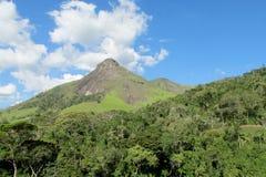 Tres Picos park, Atlantycki tropikalny las deszczowy, Brazylia Obraz Stock