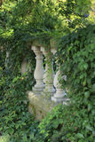 Tres pilares en una verja rodeada por las plantas y la hiedra foto de archivo libre de regalías