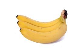 Tres plátanos aislados en el fondo blanco Fotografía de archivo libre de regalías