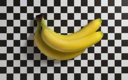 Tres plátanos en un fondo a cuadros Fotos de archivo libres de regalías