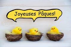 Tres polluelos con el francés cómico Joyeuses Paques del globo de discurso significan Pascua feliz Imagenes de archivo