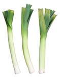 Tres puerros verdes Galés. Fotos de archivo libres de regalías