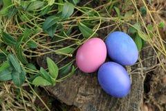 Tres rosados y la violeta colorearon los huevos de Pascua tradicionales en la hierba Foto de archivo libre de regalías
