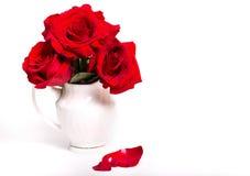 Tres rosas rojas en un florero blanco en un fondo blanco y el fa Fotos de archivo libres de regalías