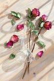 Tres rosas rojas, p?talos dispersados de la flor, hojas verdes, florero redondo de cristal en el primer de madera de la opini?n s fotos de archivo libres de regalías