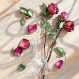 Tres rosas rojas, p?talos dispersados de la flor, hojas verdes, florero redondo de cristal en el primer de madera de la opini?n s foto de archivo libre de regalías