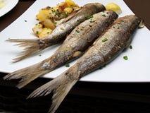Tres sardinas asadas Fotos de archivo