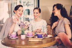 Tres señoras jovenes elegantes en un café Imágenes de archivo libres de regalías