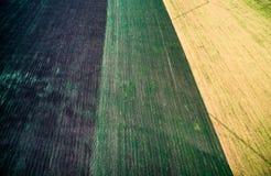 Tres secciones coloridas de campo en campo Fotografía de archivo libre de regalías