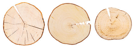 Tres secciones representativas de madera Imagenes de archivo