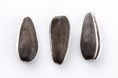 Tres semillas de girasol en blanco Fotos de archivo libres de regalías