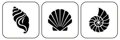 Tres shelles Fotografía de archivo libre de regalías