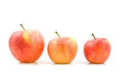 Tres tallas de manzanas imagen de archivo