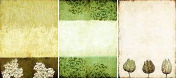 Tres texturas encantadoras del fondo Imágenes de archivo libres de regalías