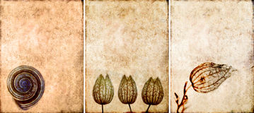 Tres texturas encantadoras del fondo Fotografía de archivo libre de regalías