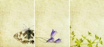 Tres texturas encantadoras del fondo Foto de archivo libre de regalías