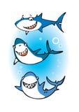 Tres tiburones felices Foto de archivo libre de regalías
