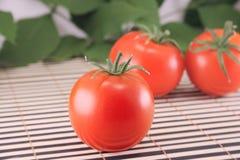 Tres tomates Fotos de archivo