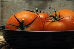 Tres tomates Foto de archivo libre de regalías
