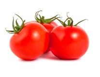 Tres tomates maduros Imagen de archivo libre de regalías