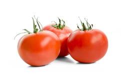 Tres tomates rojos aislados en el fondo blanco Imagen de archivo libre de regalías