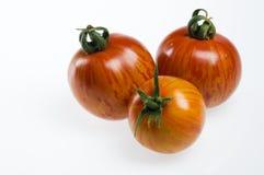 Tres tomates rojos de la cebra Fotografía de archivo