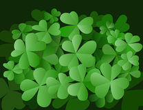 Tres tréboles de las hojas Imagen de archivo libre de regalías