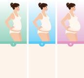 Tres trimestres del embarazo Foto de archivo libre de regalías