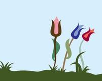 Tres tulipanes stock de ilustración