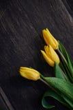 Tres tulipanes amarillos en la tabla Imagen de archivo libre de regalías