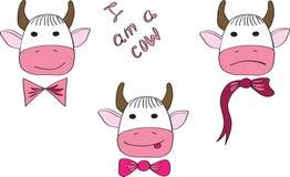 Tres vacas con un diverso humor Foto de archivo libre de regalías