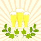 Tres vidrios de cerveza fresca con el sombrero de la espuma con las ramas de saltos Fotografía de archivo libre de regalías