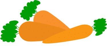 Tres zanahorias con las hojas verdes en el top Fotos de archivo libres de regalías